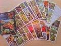 ロシア  植物カード  18枚セット  1988年
